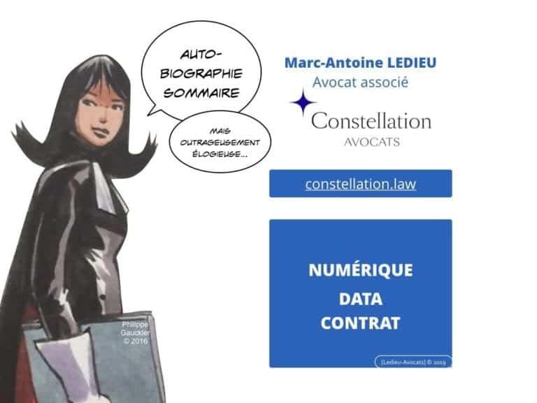 235-RGPD-GDPR-e-Privacy-SYNTHESE-audit-contrat-Constellation-Avocats-©Ledieu-Avocats.011-1-1024x768
