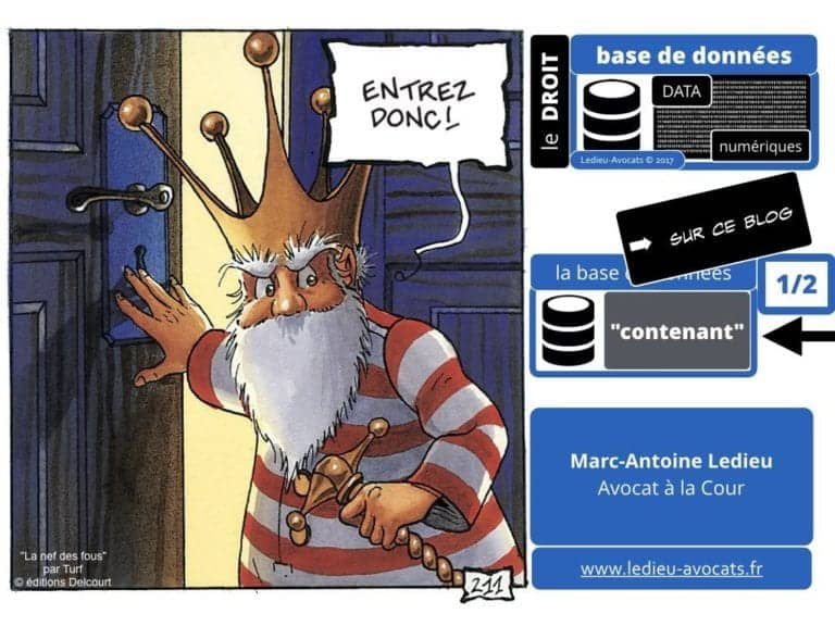 235-RGPD-GDPR-e-Privacy-SYNTHESE-audit-contrat-Constellation-Avocats-©Ledieu-Avocats.028-1-1024x768