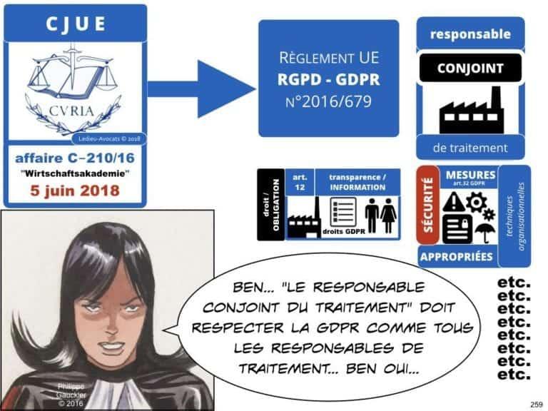 235-RGPD-GDPR-e-Privacy-SYNTHESE-audit-contrat-Constellation-Avocats-©Ledieu-Avocats.259-1024x768