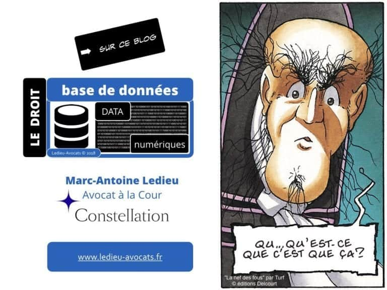 235-RGPD-GDPR-e-Privacy-SYNTHESE-audit-contrat-Constellation-Avocats-©Ledieu-Avocats.468-1024x768