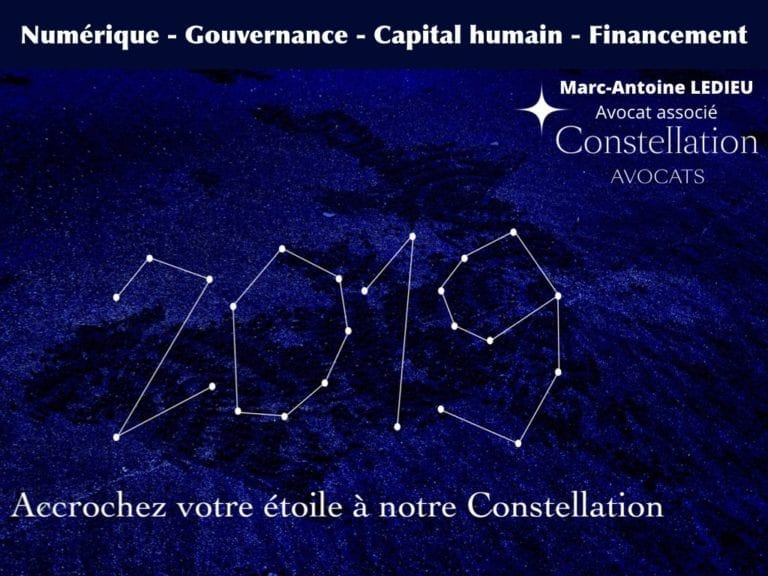 244-PUB-ciblée-PRESSE-en-ligne-RGPD-GDPR-e-Privacy-jurisprudence-2018-2019-CJUE-France-Constelation-Avocats©Ledieu-Avocats.115