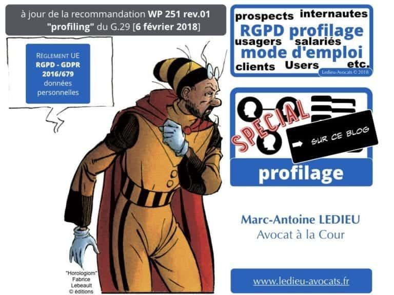 244-PUB-ciblée-PRESSE-en-ligne-RGPD-GDPR-e-Privacy-jurisprudence-2018-2019-CJUE-France-Constelation-Avocats©Ledieu-Avocats.077-1024x768