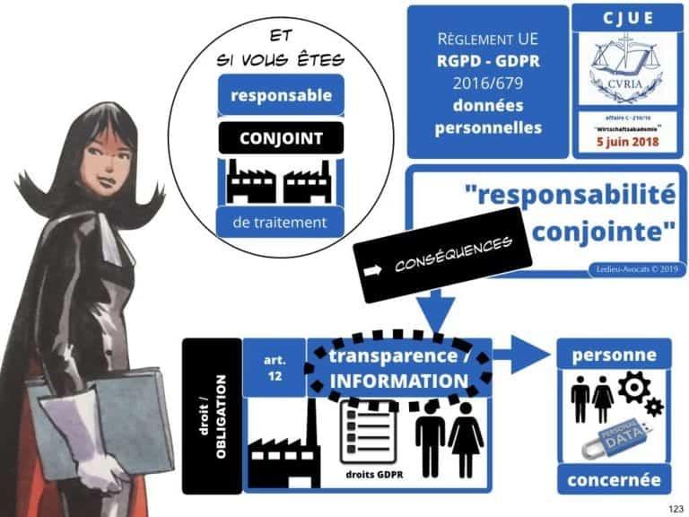 244-PUB-ciblée-PRESSE-en-ligne-RGPD-GDPR-e-Privacy-jurisprudence-2018-2019-CJUE-France-Constelation-Avocats©Ledieu-Avocats.123-1024x768