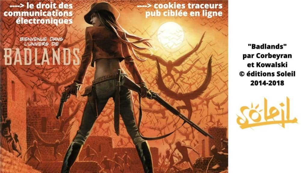 295-cookies-traceurs-conseil-detat-19-juin-2020-délibération-CNIL-4-juillet-2019-169°-©Ledieu-Avocats-22-06-2020.109-1280x720
