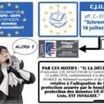 297-annulation-du-PRIVACY-SHIELD-CJUE-16-juillet-2020-aff.-C-31118-SCHREMS-II-données-personnelles-transfert-HORS-UE-16-07-2020.017