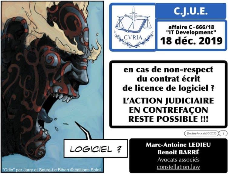 276-droit-du-LOGICIEL-CJUE-18-decembre-2019-IT-dévelopment-affaire-C-666-18-Constellation©Ledieu-Avocats-18-12-2019.001-1024x768