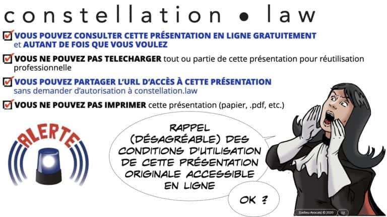 307 Intelligence artificielle-machine-learning-deep-learning-base de données-BIG-DATA *16:9* Constellation ©Ledieu-Avocat-13-10-2020.012