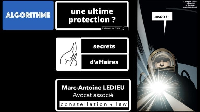 307 Intelligence artificielle-machine-learning-deep-learning-base de données-BIG-DATA *16:9* Constellation ©Ledieu-Avocat-13-10-2020.111