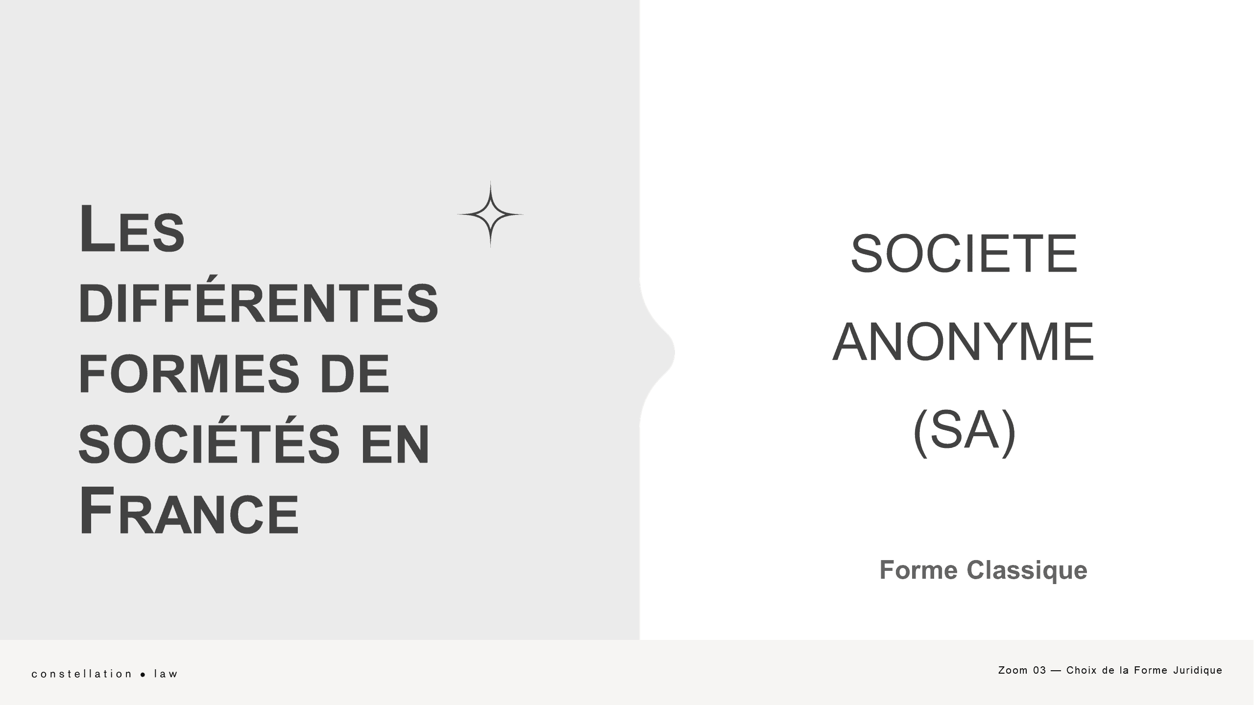 Choix Forme Société